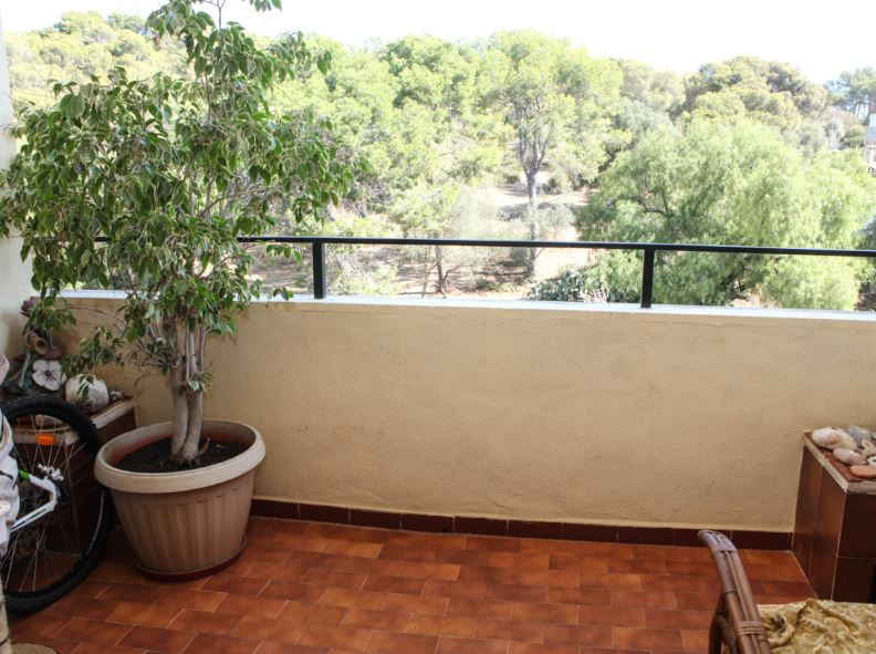 Apartment overlooking Belver Park in El Terreno, Mallorca