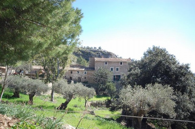 Opportunity to buy an old stone Mallorca finca, with 350 acres, for renovation.